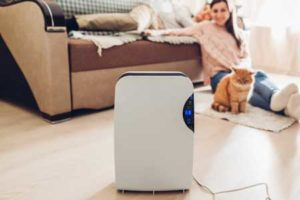 Air Purifier for Smokers In House